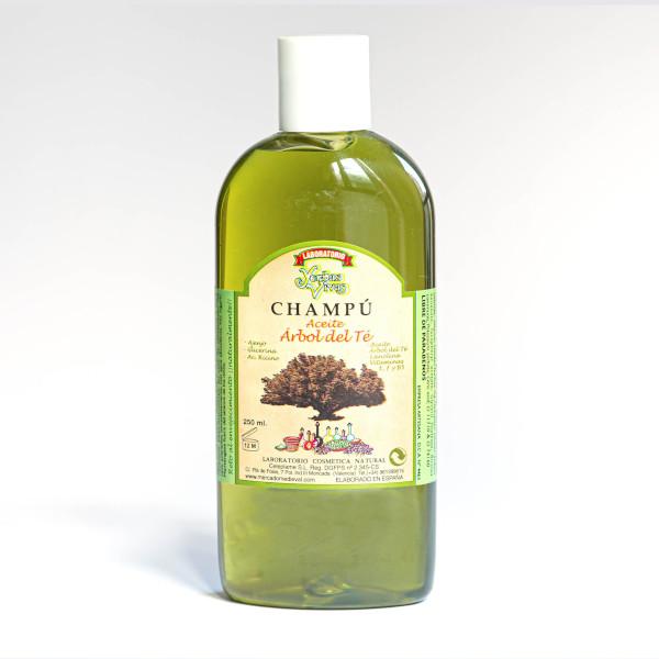 Champu Arbol del Té